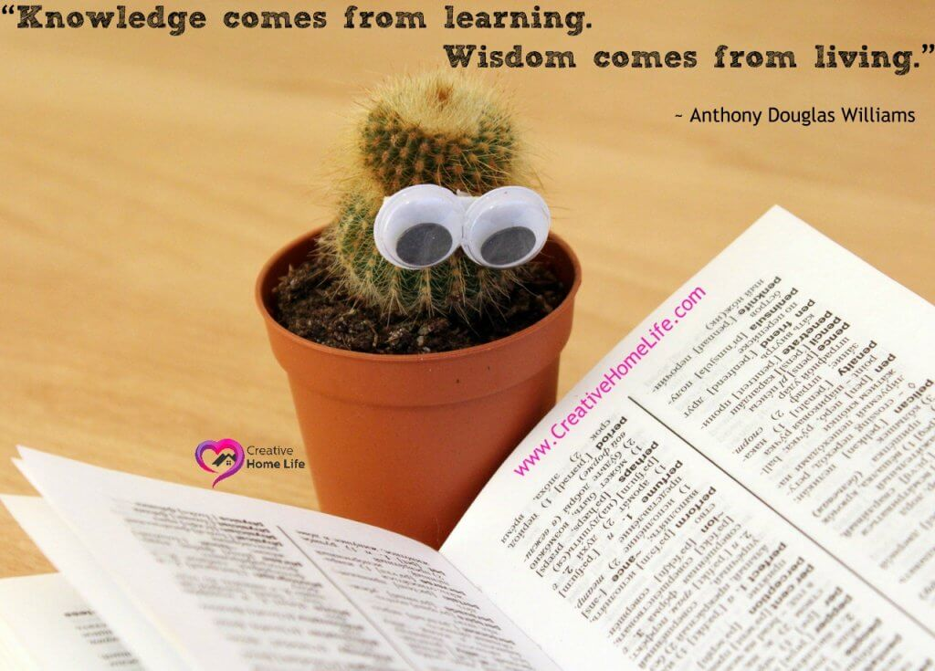 """Knowledge comes from learning. Wisdom comes from living."""